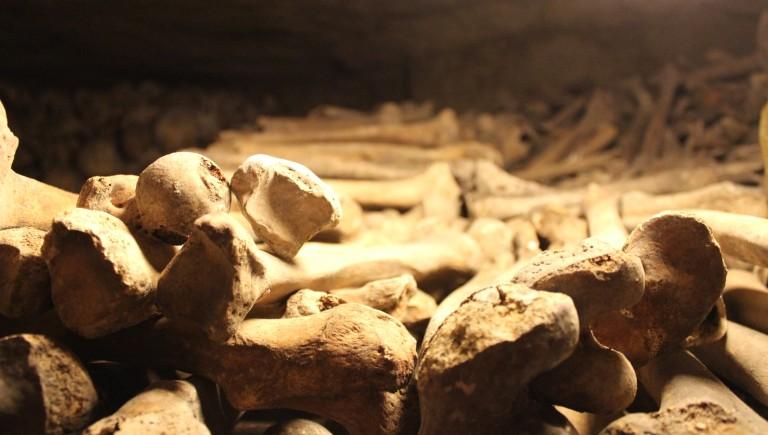 Catacombs 5 - Fried Green Kimchi